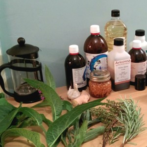 Herbs and herbal remedies for the workshop.